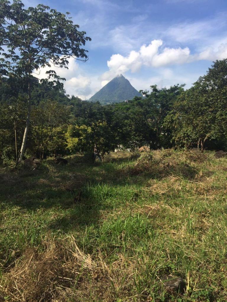 795923NR Venta Lote Suroeste Antioquia - wasi_795923