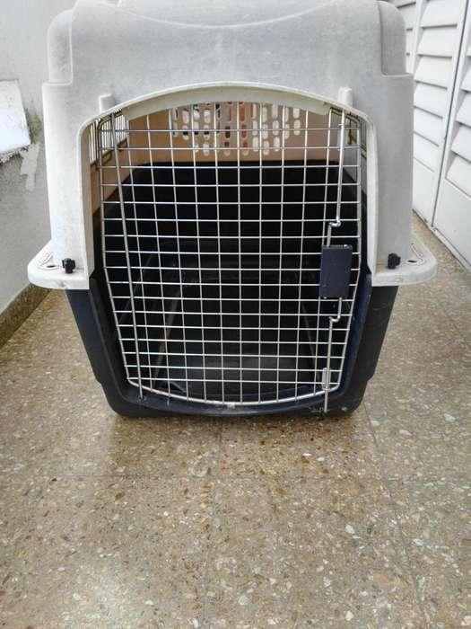 Vendo Canil para Transporte de Mascotas