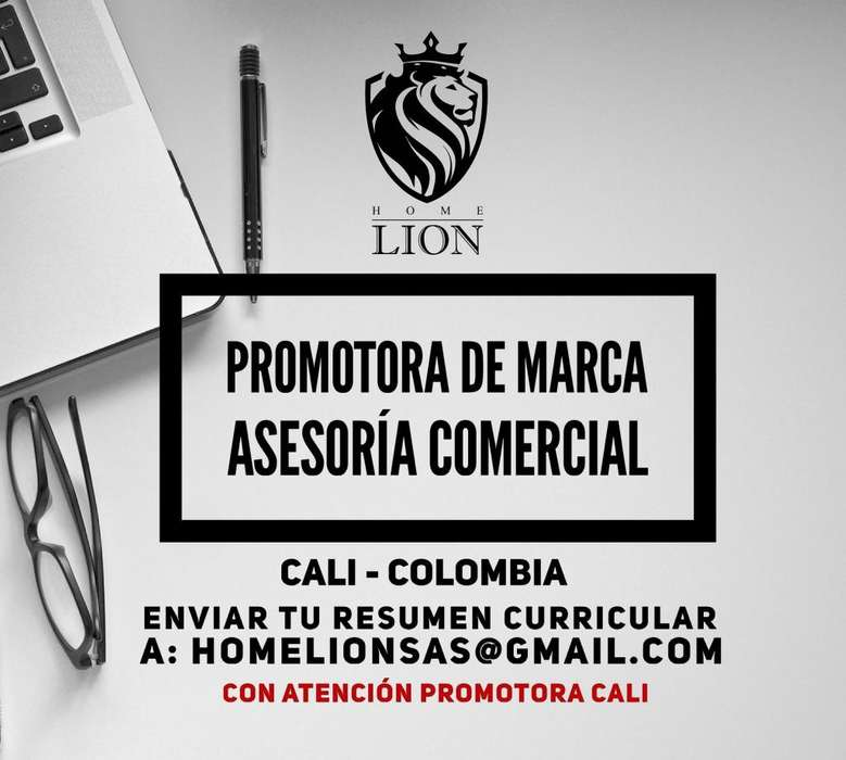 Promoting Comercial Homelion