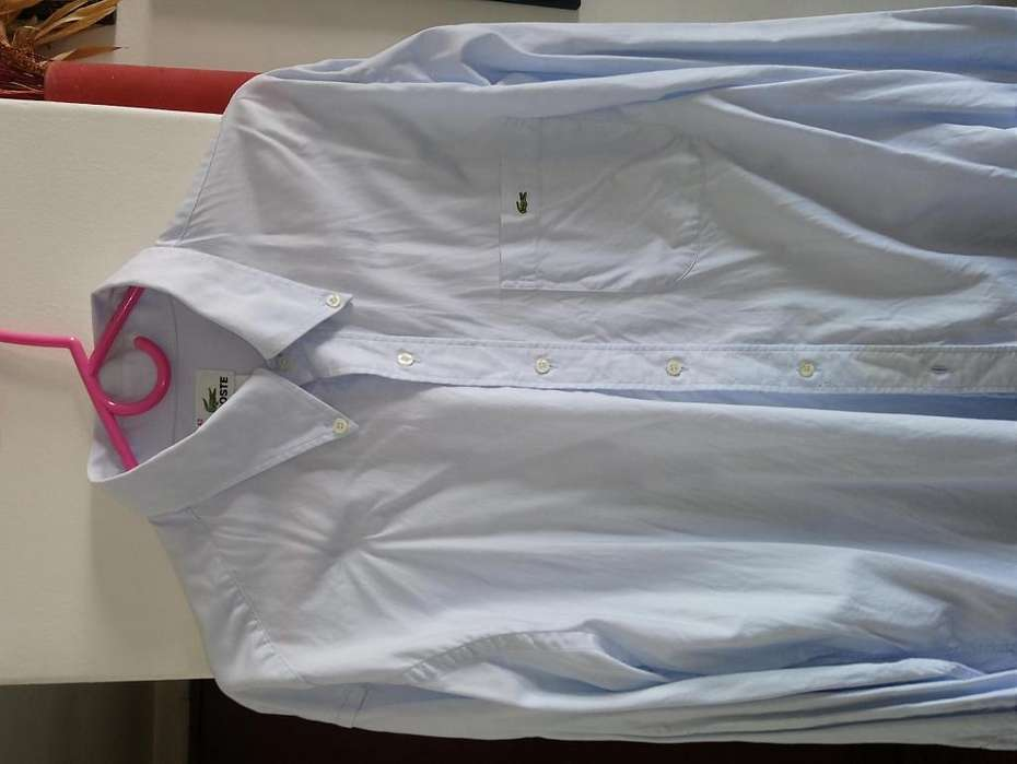 <strong>camisa</strong> LACOSTE impecable