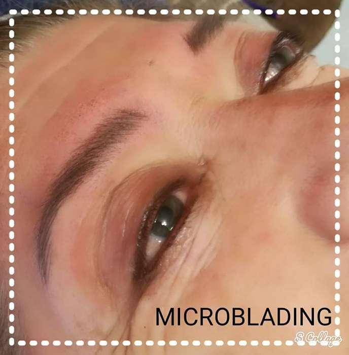Dermopigmentacion Capilar Labios Cejas