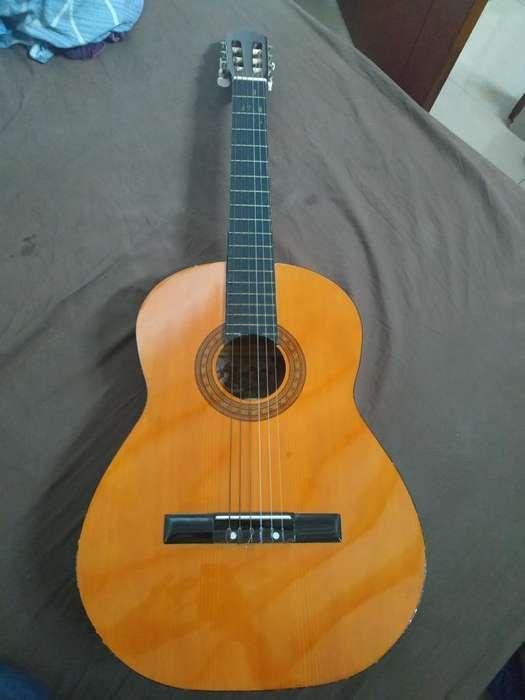 Guitarra Acústica Traída de España