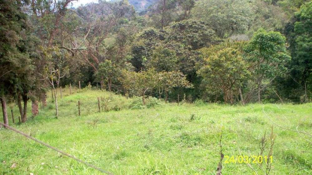 VENPERMUTO FINCA EN SILVANIA