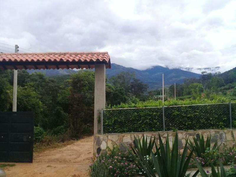 Lote En Venta En Los Patios La Garita Cod. VBIAS-10641