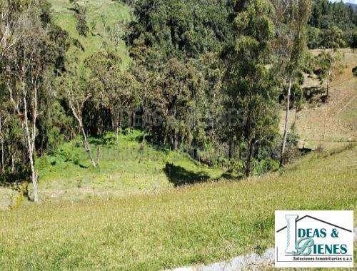 Lote En Venta Medellín Sector Las palmas: Código 845445