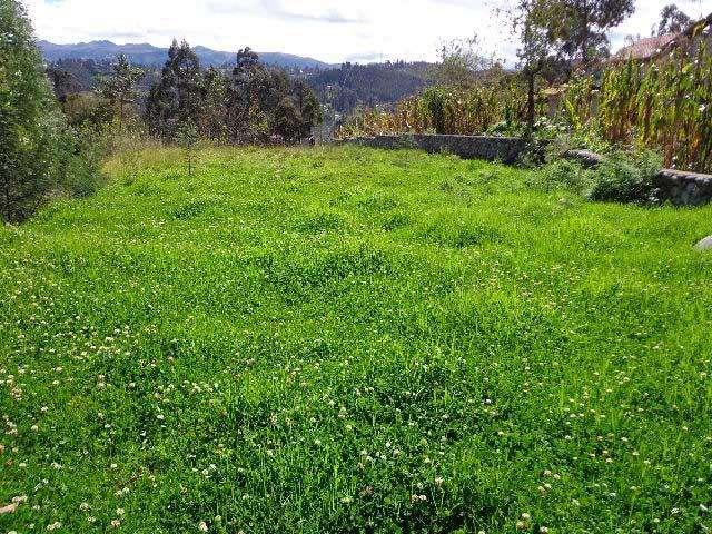 Terreno sector San Vicente entre Ricaurte y La Raya