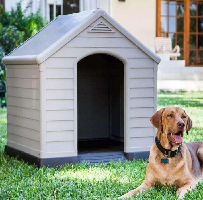 Casa para Perro Grande Térmico Nuevos