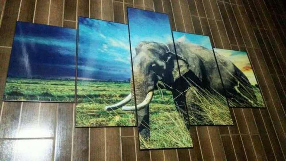 Cuadros Decorativos Elefante Cinco Pzs.