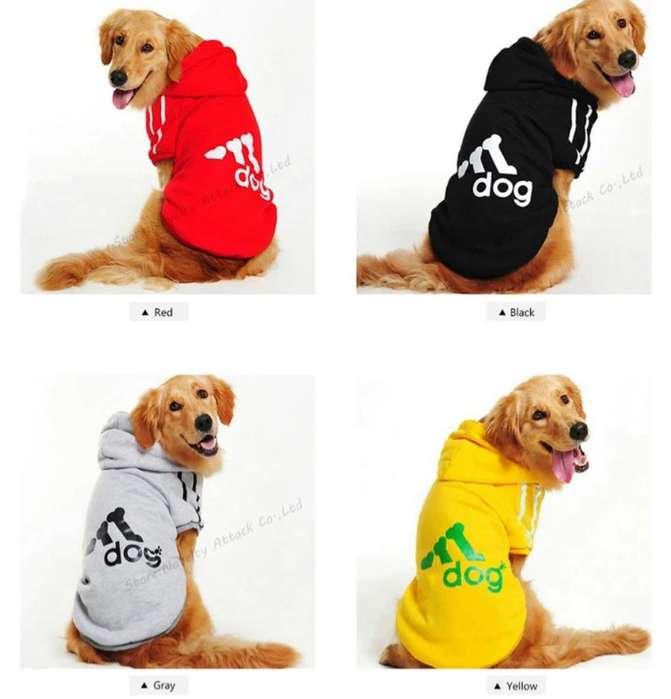 Ropa Adidog para Mascotas Grandes
