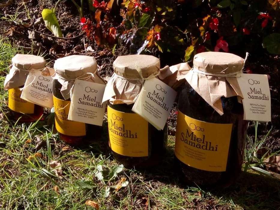 Miel Pura Orgánica 660 cc, 100% de abejas natural