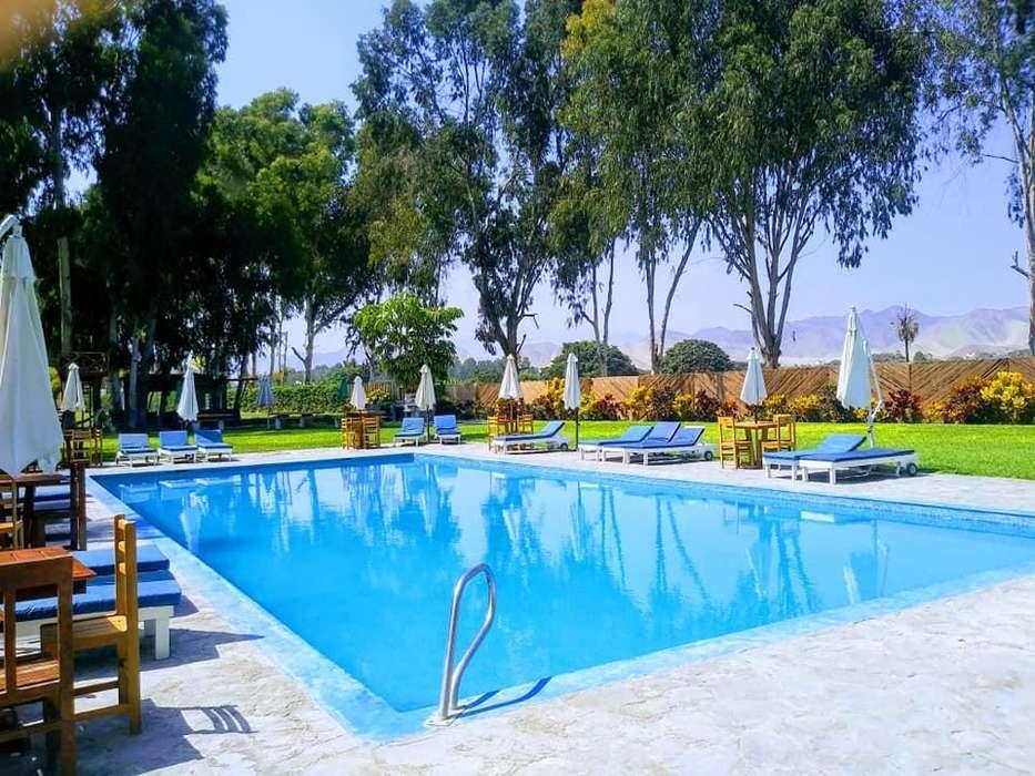ID 115838 En venta! Bujama Inn Beach Resort para unas mini vacaciones cerca a Lima