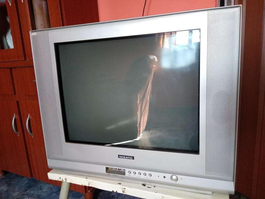 Televisor 21'