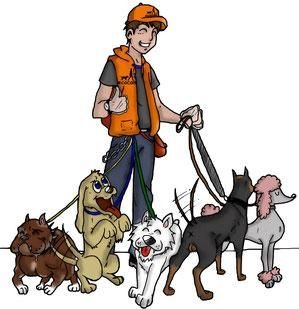 servicios para pasear mascotas