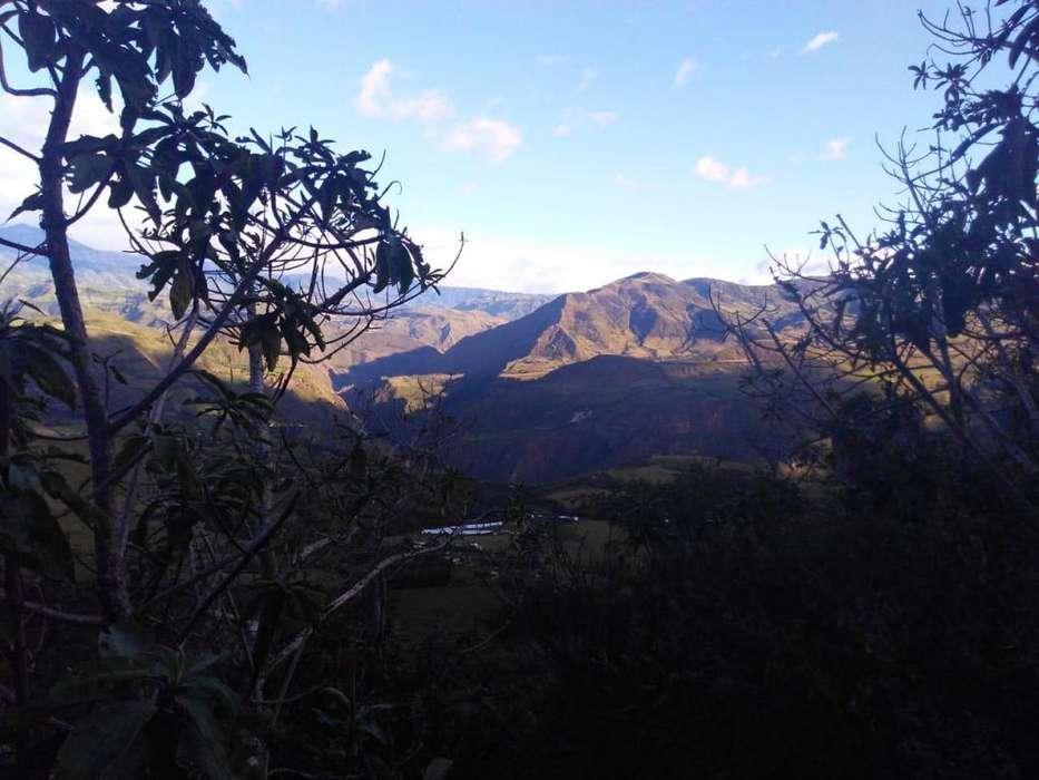 VENDO PERMUTO <strong>terreno</strong> CAMPESTRE-CLIMA CALIDO,FACILIDAD DE PAGO