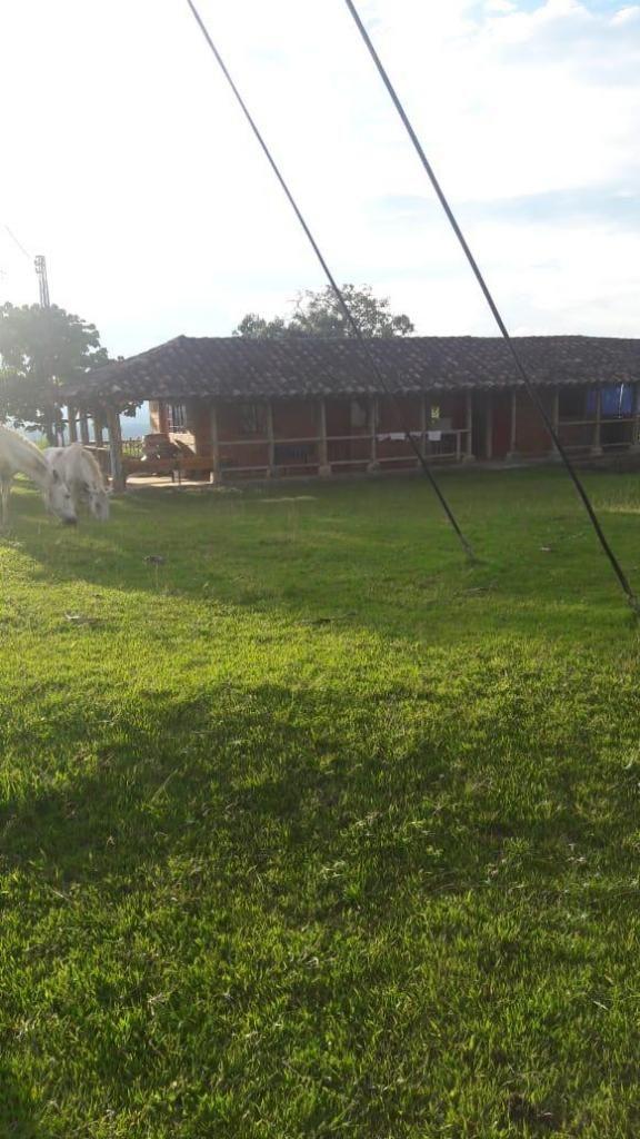 Finca Ganadera  en Venta Valle 90510-0 - wasi_1428945