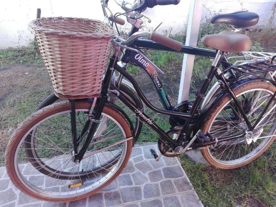 Bicicleta rodado 26 de PASEO CON CANASTO y asiento