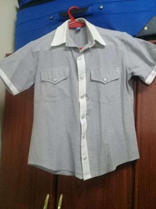 Vendo Camisas T/10y 15 Y Campera T/10