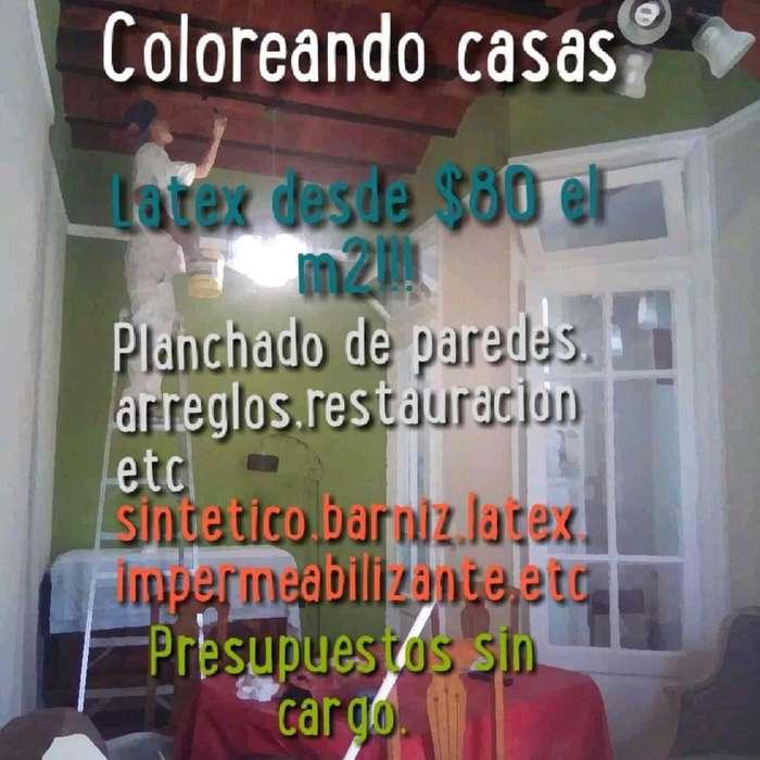 Pintor Oficial Casas, Comercios Oficinas
