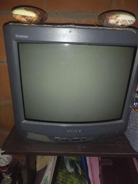 Vendo Tv 14 Pulgadas 50.000