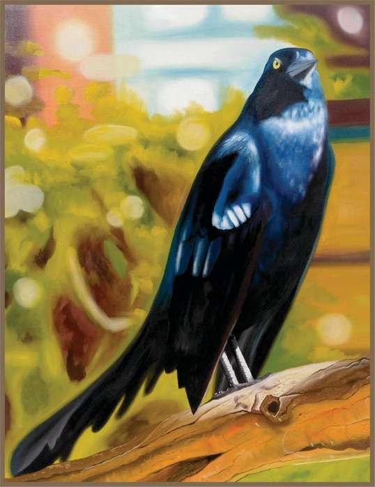 Cuadro en homenaje a la ave típica de Cartagena, Mariamulata