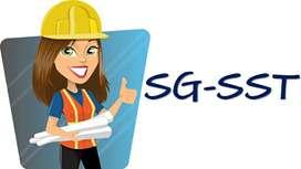Curso 50 horas del SG - SST