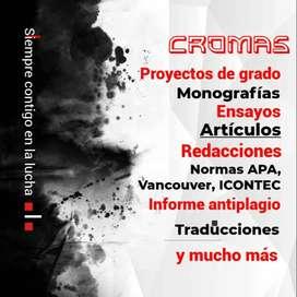 Investigador, redactor, traductor, proyectos de grado