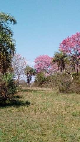 """El """"Paraiso"""", está en venta: viva seguro y sano, entre la naturaleza. terreno grande(65x255x100), con vivienda rural"""