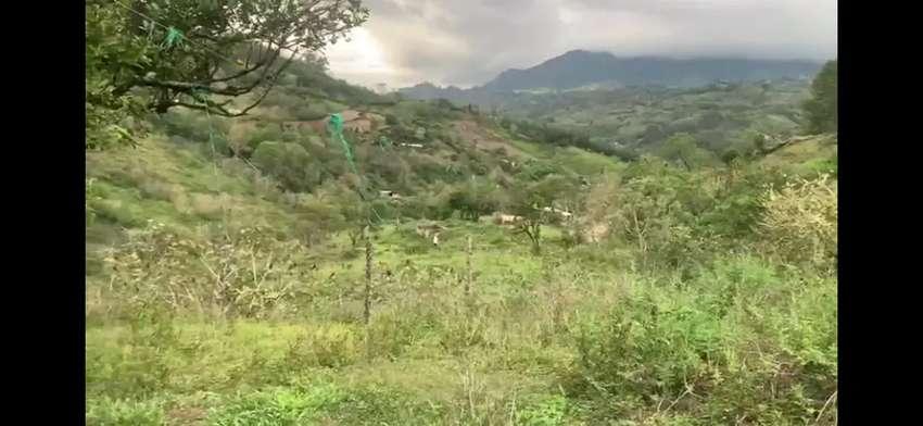Finca en la unión Cundinamarca