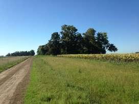 vendo campo en zona la punilla San Luis