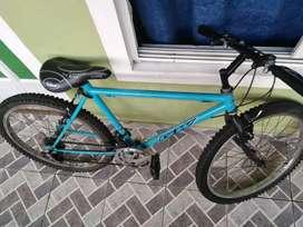 Bicicleta Ring 24