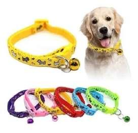 Collar Para Mascota Perro O Gato Económico Con Cascabel x2