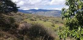 """Venta de un terreno """"El Chaparral"""" de 7.5 hectáreas"""