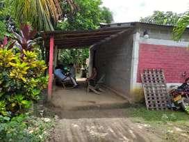 de Opoetunidad, Mejora en Puerto Franco
