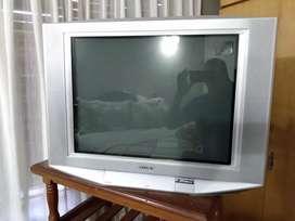 Vendo tv de 21 en excelentes condiciones