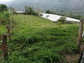 Vendo lote rural en Choachi 2.800 mts