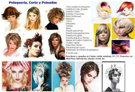 Peluqueria Peinado Estilista Corte Coifeu Trenza Aprende X17