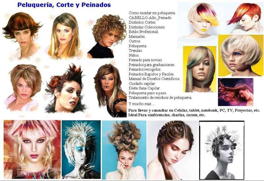 Peluqueria Peinado Estilista Corte Coifeu Trenza Aprende X17 0
