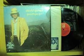David Gates - Good Bye Girl - VINYL ARG