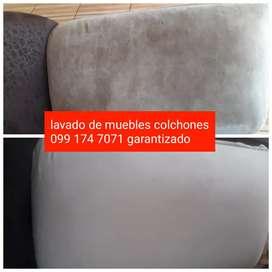 Limpieza lavado muebles domicilio garant