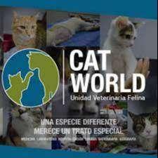 Guardería de Gatos