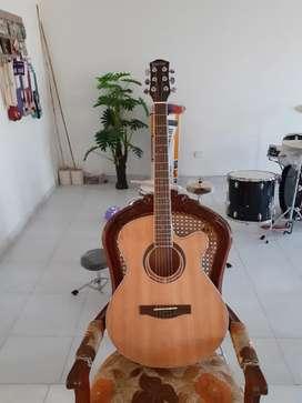 Venta de guitarra cuerdas de acero
