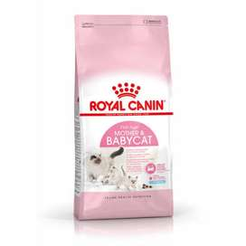 Delivery Royal Canin Cat Mother And Baby