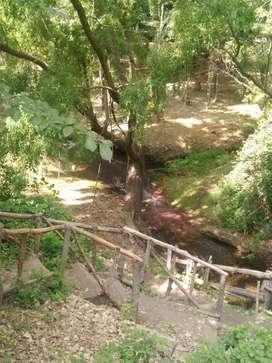 1 Hectárea en el Manzano Histórico
