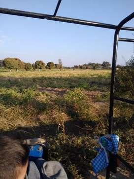 Vendo terreno agricola
