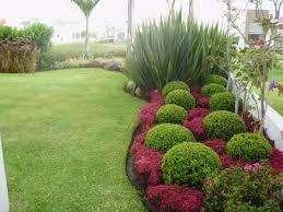 jardinero ofrece sus servicios  todo tipo de trabajo de areas verdes