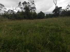 Se vende tres hectáreas en la hacienda la ponderosa luz agua dos casas aptas para vivienda , vía pública por la propieda