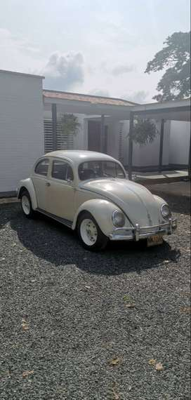 Clásico Volkswagen Escarabajo 1954