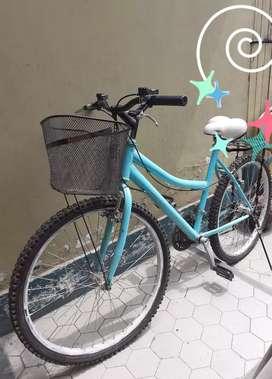 Vendo Bicicleta de mujer usada