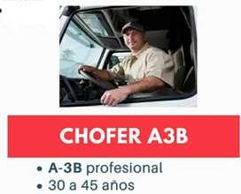 CHOFER  A3B