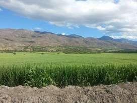 11800m  en Catamayo planas